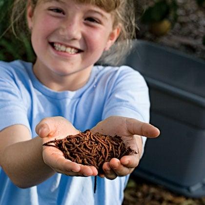 Kids worm farm