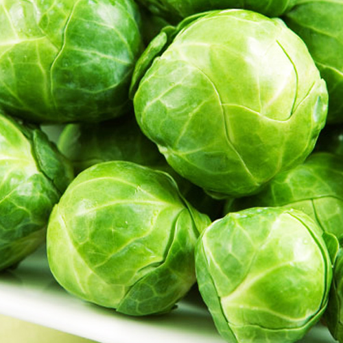 BRUSSELS SPROUTS - Uncle Jim's Worm Farm