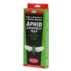 aphid and whitefly trap