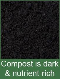 compost-dark