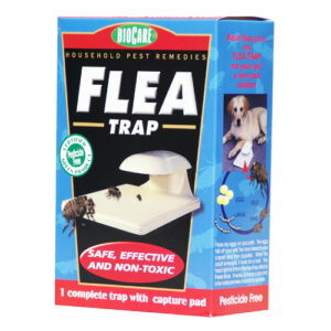 natural flea trap
