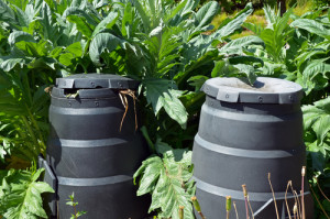 composting bins in garden