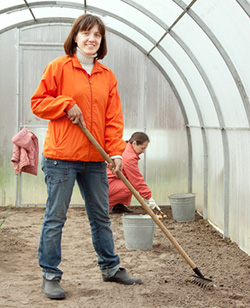 compost in greenhouse