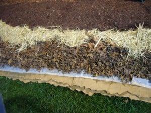 """Image result for lasagna composting"""""""
