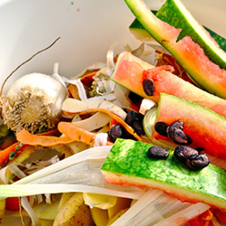 food scraps for composting