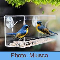 ideal bird feeder