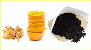oranges coffee grounds and eggshells for composting