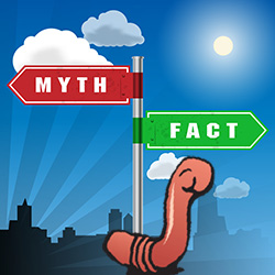 worm myths