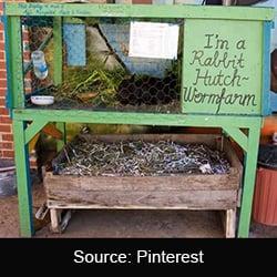 rabbit hutch wormfarm