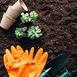 spring gardening with gloves